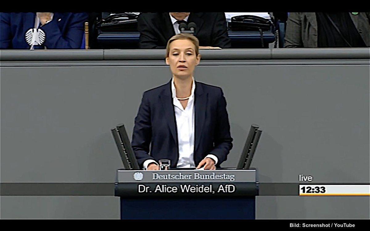 Dr. Alice Weidel - Rede vom 22.01.2018