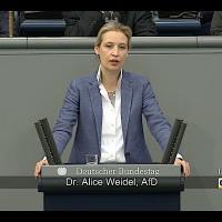 Dr. Alice Weidel - Rede vom 22.02.2018