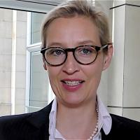 Die AfD will Volksentscheide in Deutschland, doch die Altparteien misstrauen dem eigenen Volk