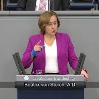 Beatrix von Storch - Rede vom 14.02.2019