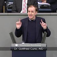 Dr. Gottfried Curio - Rede vom 14.02.2019