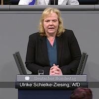 Ulrike Schielke-Ziesing - Rede vom 14.02.2019