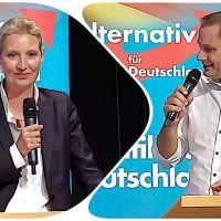 Dr. Weidel: Ich staune immer im Bundestag, was da für Figuren rumsitzen, die haben noch nie gearbeitet!