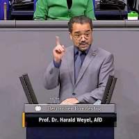 Prof. Dr. Harald Weyel - Rede vom 24.02.2021