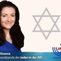 Juden in der AfD: Die Politik der offenen Grenzen trägt ihre bitteren Früchte!